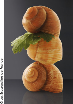millefeuille d 39 escargots en dentelle de parmesan a vos assiettes recettes de cuisine illustr es. Black Bedroom Furniture Sets. Home Design Ideas
