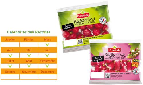Tartare de radis a vos assiettes recettes de cuisine - Quand cueillir les radis ...