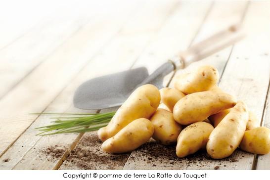 Salade de ratte du touquet au concombre et au crabe a vos assiettes recettes de cuisine - Cuisiner la ratte du touquet ...