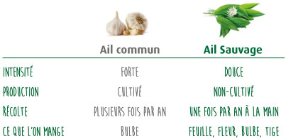 Bruschetta de tartare ail sauvage poire caram lis e for Ail sauvage cuisine