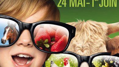 Photo de Salon de l'Agriculture Aquitaine du 24 mai au 1er juin 2014