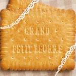 Le Grand Petit Beurre Bonneterre, le format du petit beurre pour les grands gourmands !