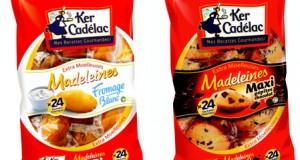 madeleines_fromage_blanc_maxi_pepites_chocolat_ker_cadelac