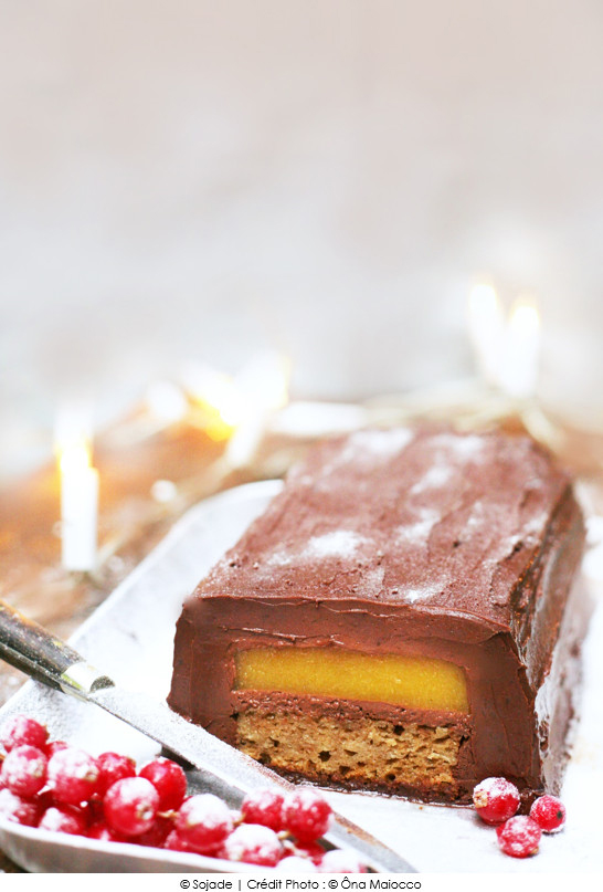 buche_de_noel_chocolat_mangue