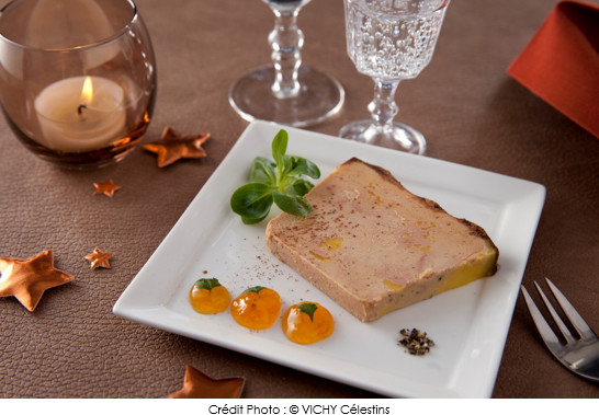 terrine vichy c lestins de foie gras mi cuit aux abricots et cacao a vos assiettes recettes. Black Bedroom Furniture Sets. Home Design Ideas