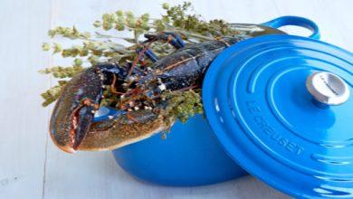 Photo de Homard bleu de Bretagne cuit en cocotte lutée aux vapeurs d'origan des montagnes