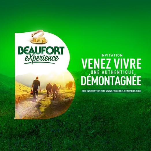 demontagnee-beaufort-experience-2016