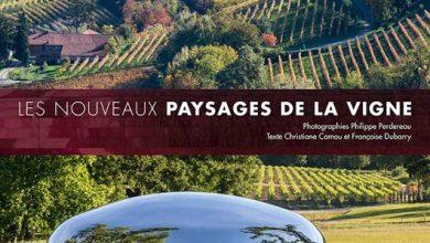Photo de Les nouveaux paysages de la vigne par Christiane Camou et Françoise Dubarry aux Éditions Ulmer