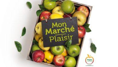 Photo de Les pommes Vergers écoresponsables débarquent chez Intermarché !