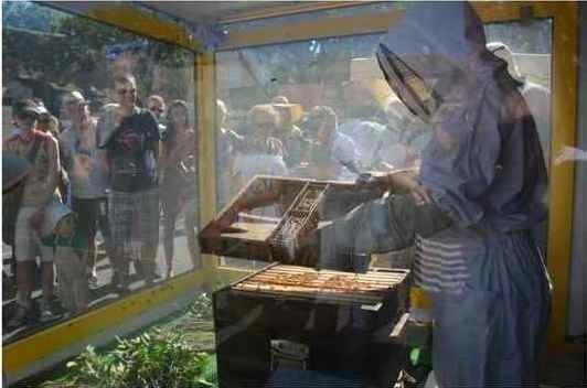 apiculteur goult