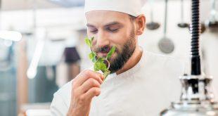 Les plantes utilisées en gastronomie