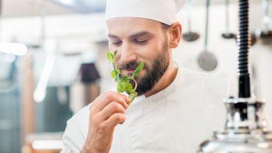 Photo de Les plantes utilisées en gastronomie