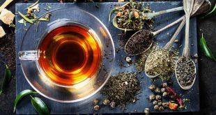 Les apports du thé et des infusions