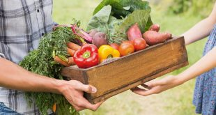 Les circuits courts de vente : une révolution pour des assiettes plus saines