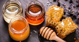La mise en pot et l'étiquetage du miel après l'extraction