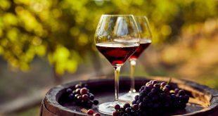Vaut-il mieux choisir des vins naturels ?