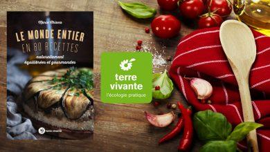 """Photo de Le monde entier en 80 recettes """"Naturellement équilibrées et gourmandes"""" de Marie Chioca aux Éditions Terre vivante"""