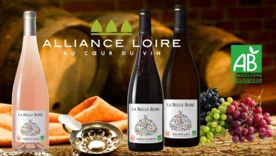 """Photo de Alliance Loire dévoile sa nouvelle gamme de vins Bio """"La Belle Robe"""""""