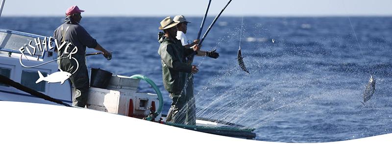 FISH4EVER pêche éthique