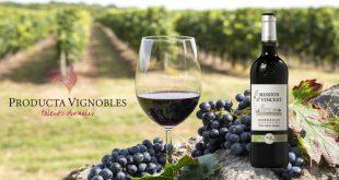 """Producta Vignobles dévoile sa nouvelle cuvée Bio : """"Mission St Vincent"""" Bordeaux 2016"""