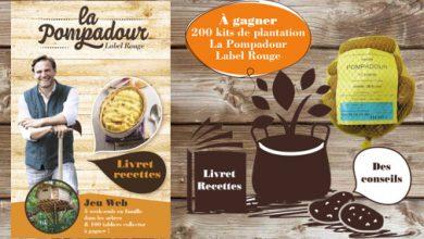 Photo de Du 1er au 31 mars 2018, recevez vos plants de pommes de terre Pompadour Label Rouge