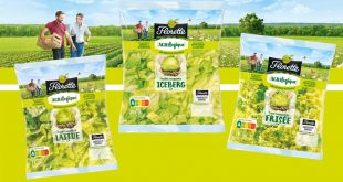 """3 salades Florette® issues d'une nouvelle démarche agricole : """"Agrilogique"""""""