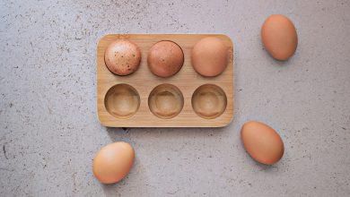 "Photo de ""Exposez vos œufs"" avec Pebbly !"
