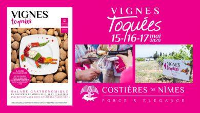 """Photo de 12ème Édition des """"Vignes Toquées"""" le 15, 16 et 17 mai 2020"""