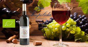 """Ampelidae dévoile """"Alias Pinot Noir"""", un vin Bio et sans sulfites"""