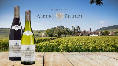 """Photo de La Maison """"Albert Bichot"""" annonce la belle saison avec deux jolies promesses"""
