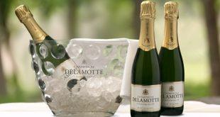 Champagne Delamotte – Des bulles en demi-bouteille