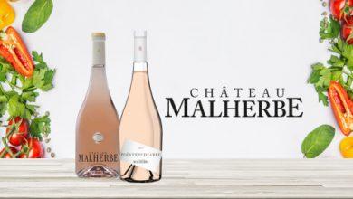 """Photo de Le """"Château Malherbe"""" & ses rosés"""