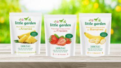 Photo de Little Garden révolutionne le Fruit !