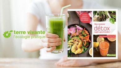 """Photo de """"Mes recettes détox super-gourmandes"""" de Marie Chioca & du Dr Guy Avril aux Éditions Terre vivante"""
