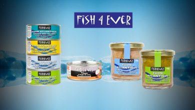 Photo de Nouvelles recettes gourmandes au Thon Fish4ever