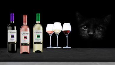"""Photo de Vins """"Gato Negro"""" Le Chat tout en couleurs pour l'été !"""