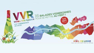 """Photo de 17ème Édition de """"Vignes, Vins, Randos"""" les 5 et 6 septembre 2020"""