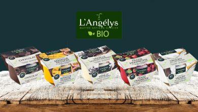"""Photo de L'Angélys® présente sa nouvelle gamme de crèmes glacées """"BIO & Bon"""""""