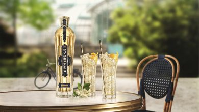 "Photo de ""Le St-Germain® Spritz"" Le cocktail star de l'été !"