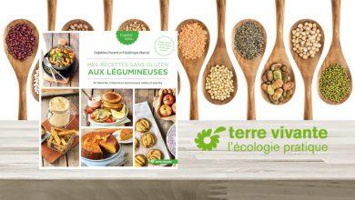 """Photo de """"Mes recettes sans gluten"""" aux légumineuses par Delphine Pocard et Frédérique Barral aux Éditions Terre vivante"""