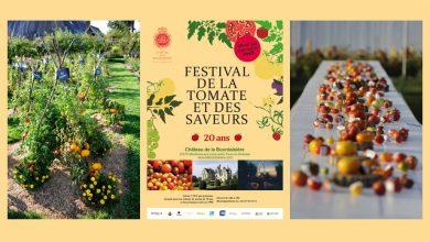 """Photo de 20ème Édition du """"Festival de la Tomate"""" les 8 et 9 septembre 2018"""
