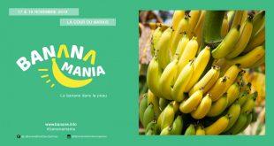 """1ère Édition de """"BananaMania"""" les 17 & 18 novembre 2018"""