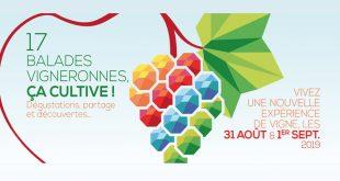 """16ème Édition de """"Vignes, Vins, Randos"""" les 31 août & 1er septembre 2019"""