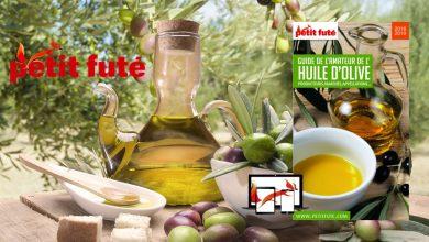 """Photo de Pour tout savoir sur """"l'Huile d'Olive"""" avec le Petit Futé"""