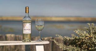 """Mouton Cadet """"Blanc 2019"""", un vin frais et gourmand !"""