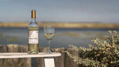 """Photo de Mouton Cadet """"Blanc 2019"""", un vin frais et gourmand !"""