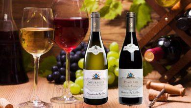 """Photo de Albert Bichot : deux grands vins du """"Domaine du Pavillon"""" s'invitent à votre table"""