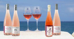 """""""Foire aux vins d'automne"""" Une sélection à petit prix pour les Rosés de l'Anjou !"""