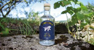 "Le gin ""Ursa Minor"" sauvage par nature par la Distillerie Heima"