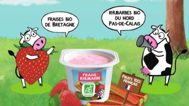 Photo de Les 2 Vaches fait toujours MEUH avec le yaourt brassé Fraise-Rhubarbe !